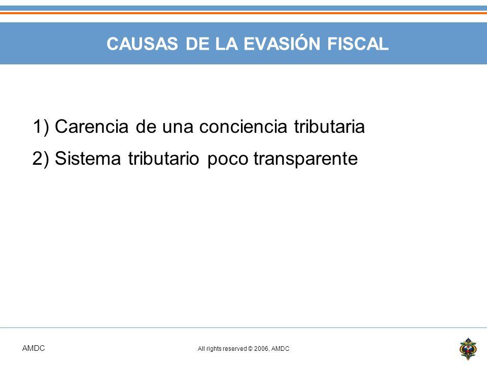 CAUSAS DE LA EVASIÓN FISCAL