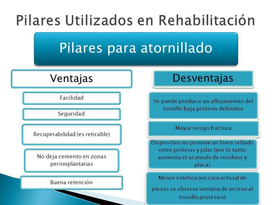 Pilares Utilizados en Rehabilitación