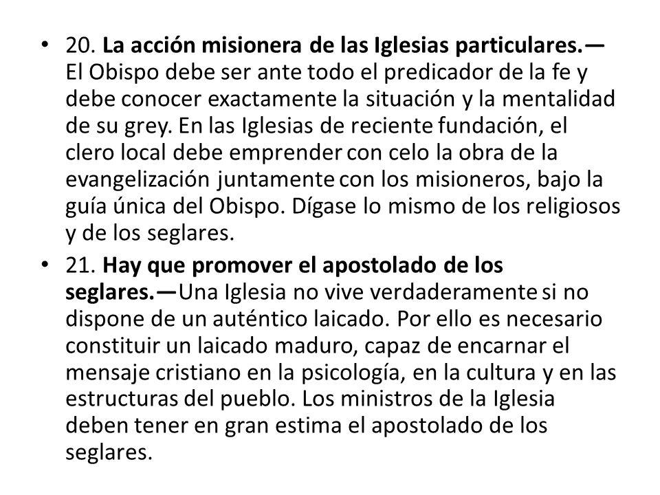 20. La acción misionera de las Iglesias particulares