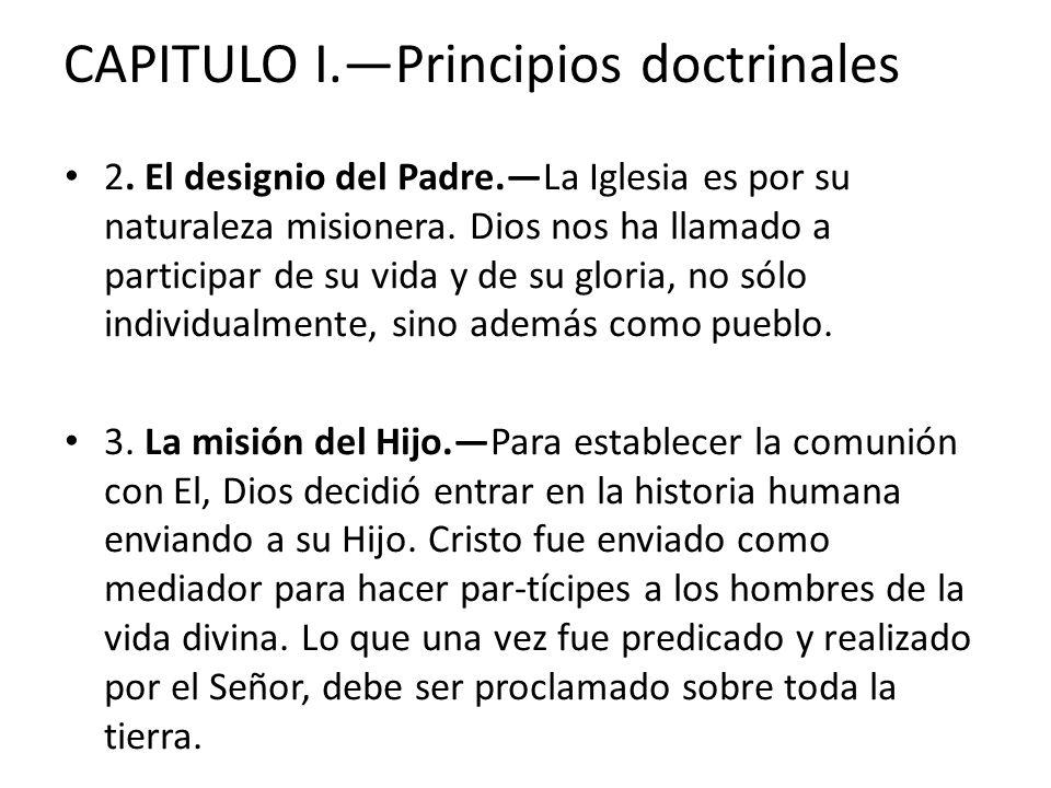 CAPITULO I.—Principios doctrinales