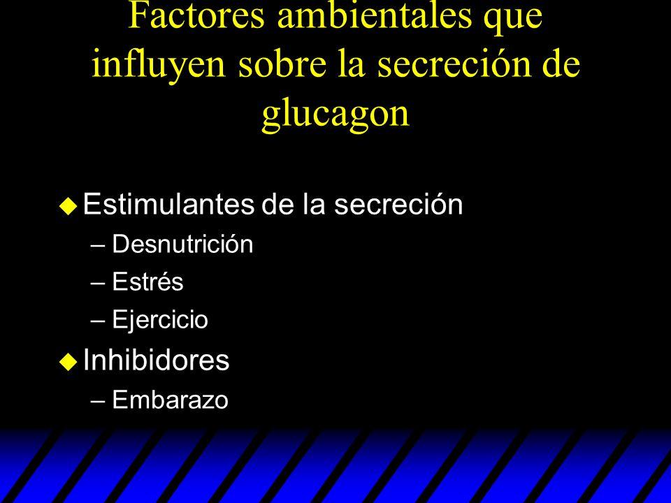 Factores ambientales que influyen sobre la secreción de glucagon