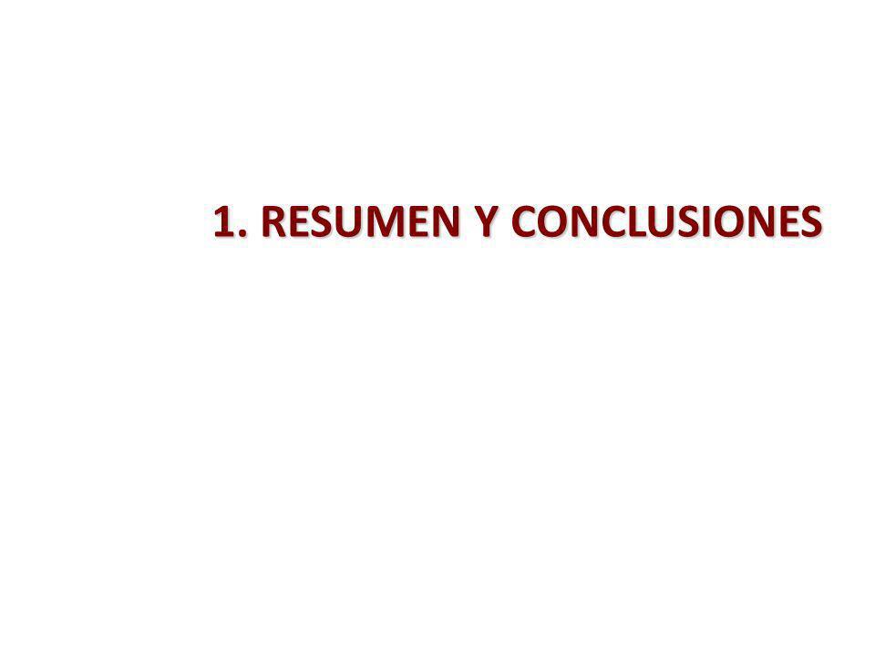 1. RESUMEN Y CONCLUSIONES