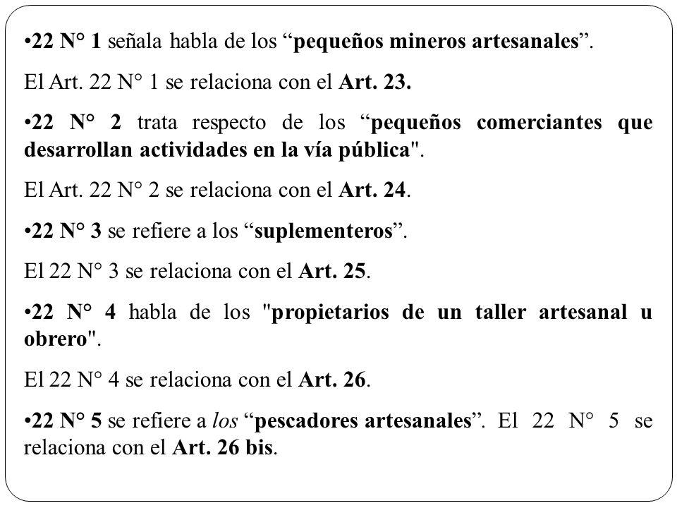 22 N° 1 señala habla de los pequeños mineros artesanales .