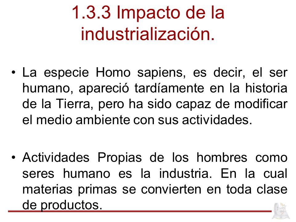 1.3.3 Impacto de la industrialización.