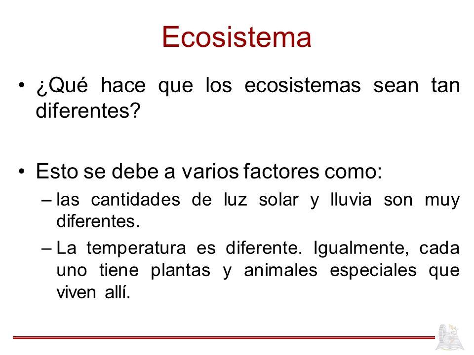 Ecosistema ¿Qué hace que los ecosistemas sean tan diferentes