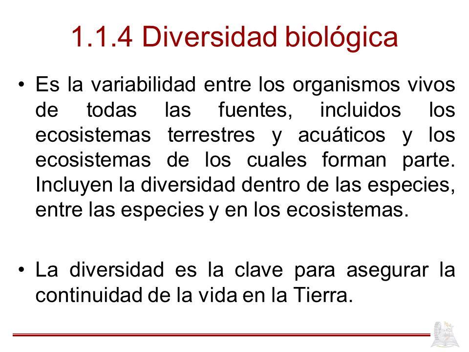 1.1.4 Diversidad biológica