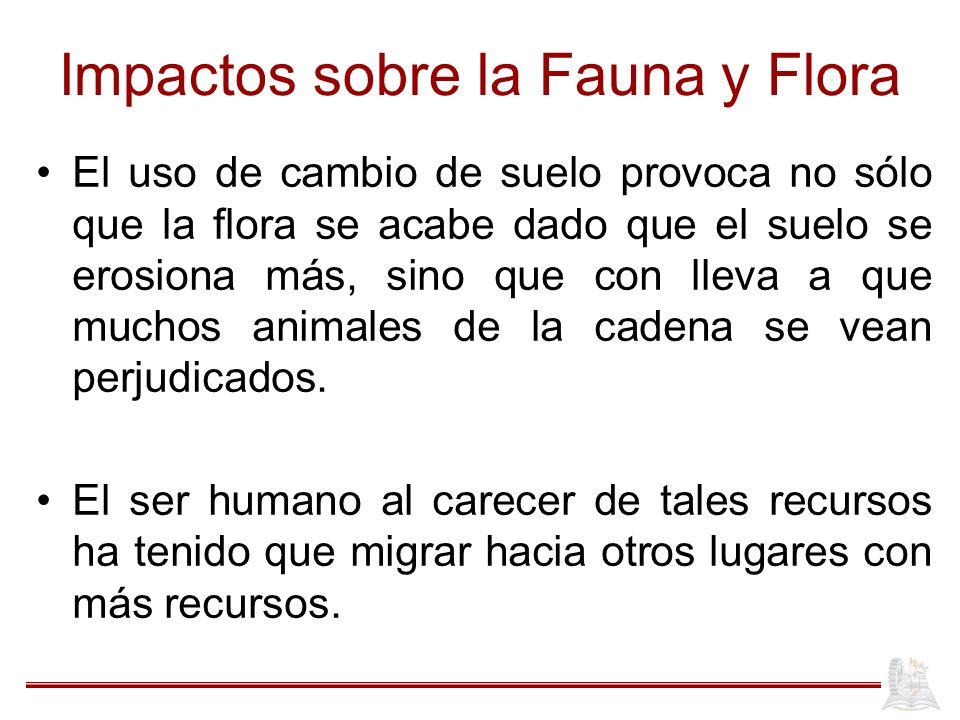 Impactos sobre la Fauna y Flora