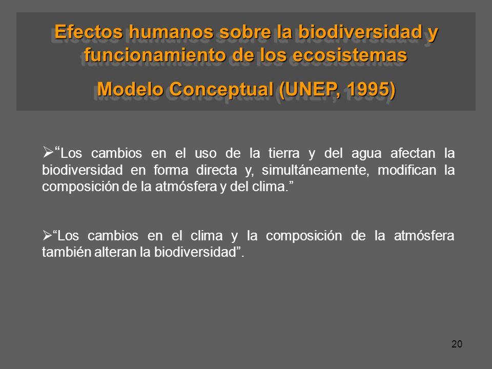 Modelo Conceptual (UNEP, 1995)