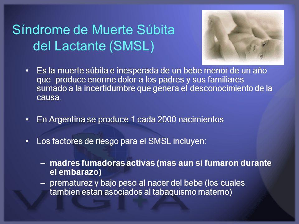 Síndrome de Muerte Súbita del Lactante (SMSL)
