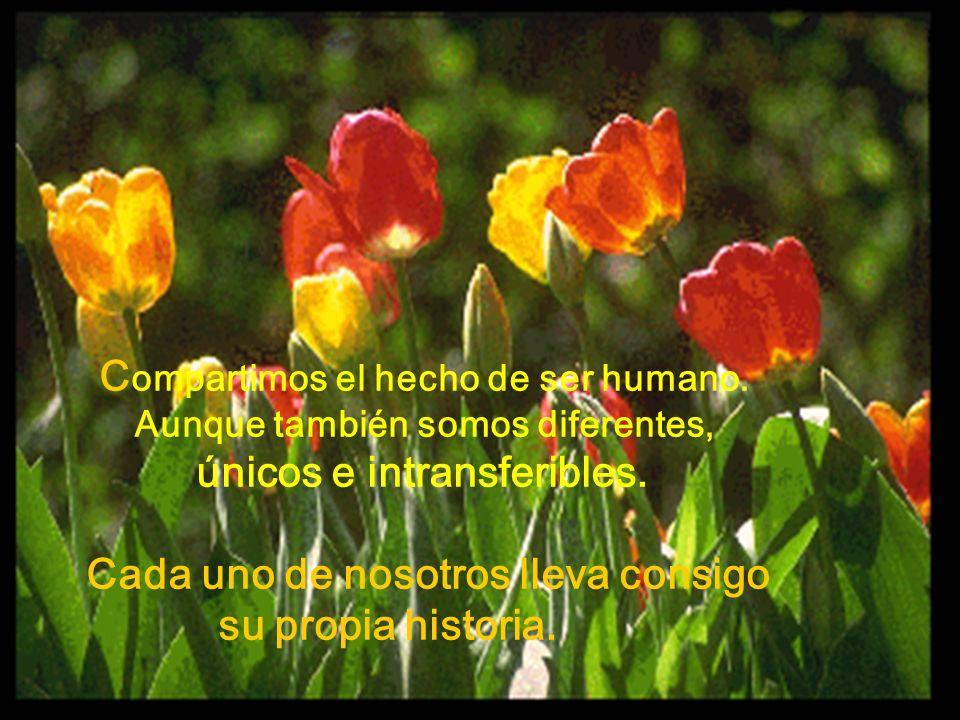 Compartimos el hecho de ser humano.