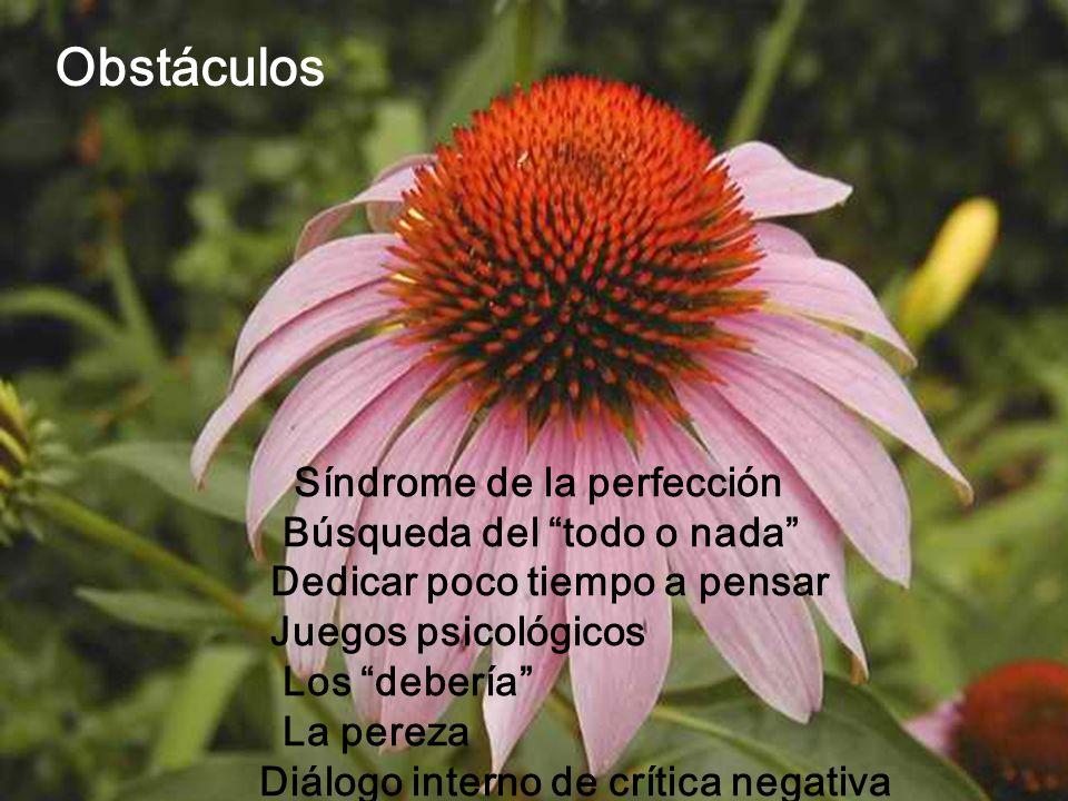 Obstáculos Síndrome de la perfección Búsqueda del todo o nada