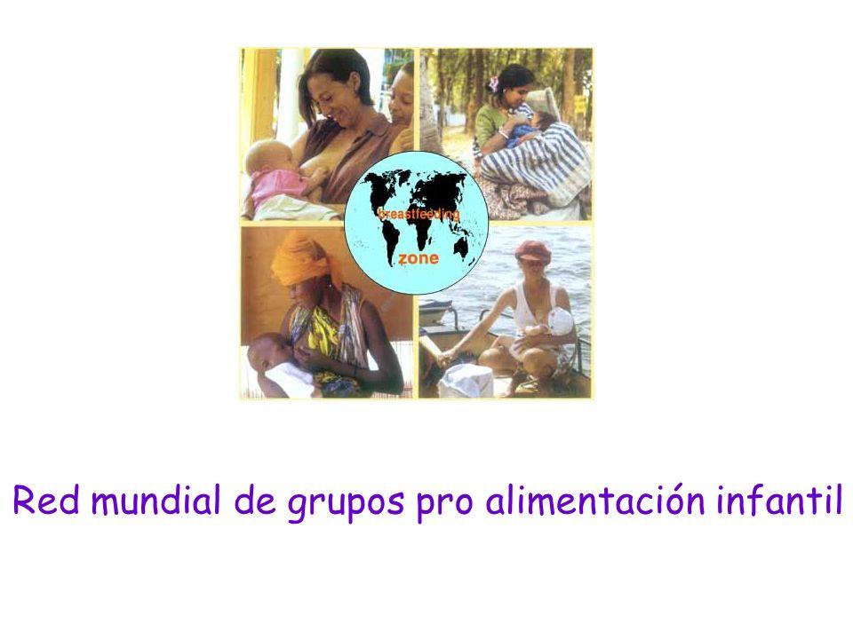 Red mundial de grupos pro alimentación infantil