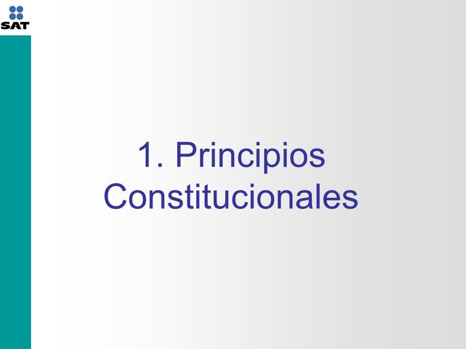 1. Principios Constitucionales