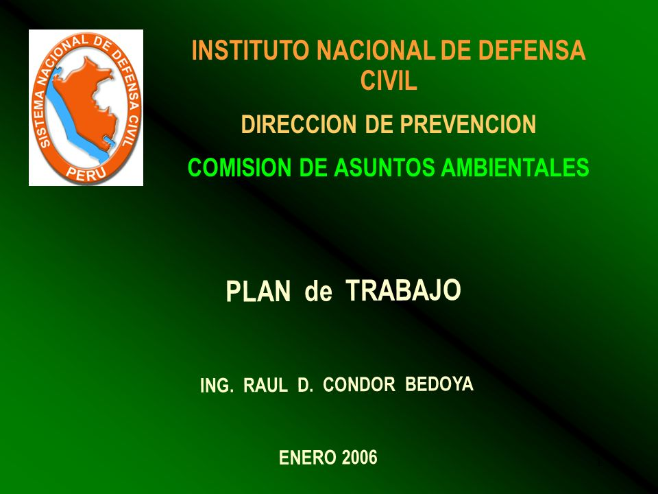 PLAN de TRABAJO INSTITUTO NACIONAL DE DEFENSA CIVIL
