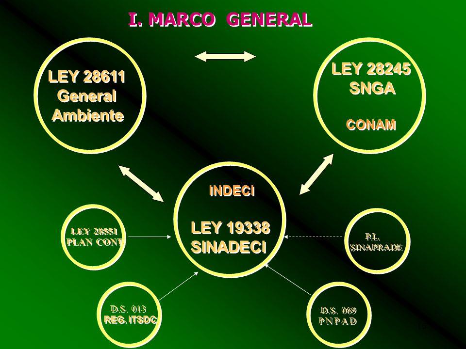 I. MARCO GENERAL LEY 28245 LEY 28611 SNGA General Ambiente LEY 19338