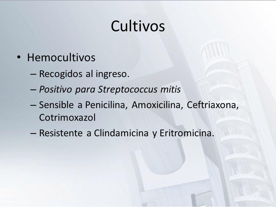 Cultivos Hemocultivos Recogidos al ingreso.