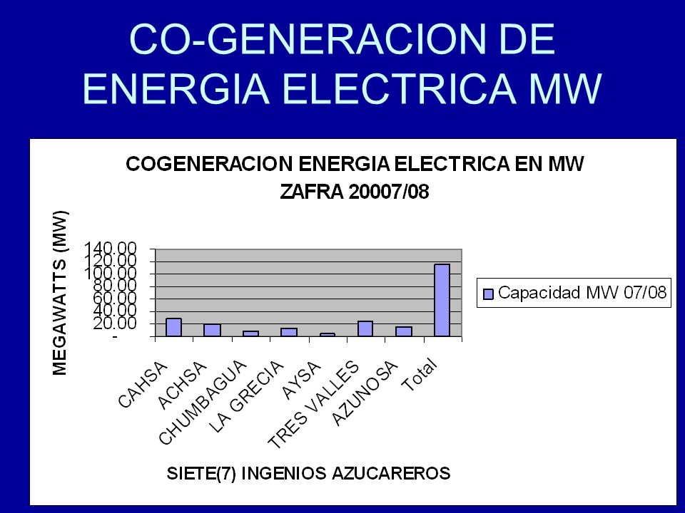 CO-GENERACION DE ENERGIA ELECTRICA MW