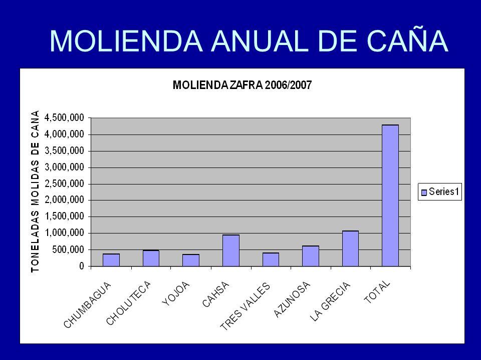 MOLIENDA ANUAL DE CAÑA
