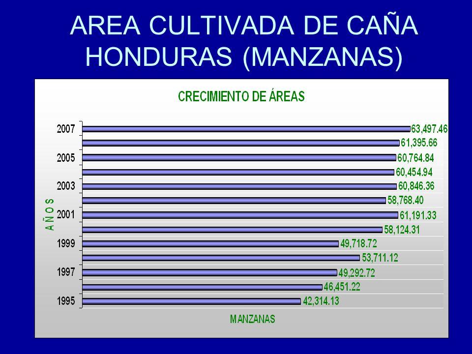 AREA CULTIVADA DE CAÑA HONDURAS (MANZANAS)