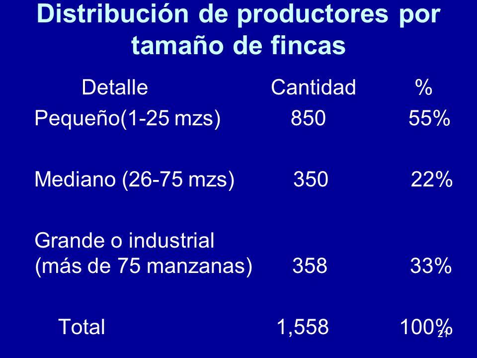 Distribución de productores por tamaño de fincas