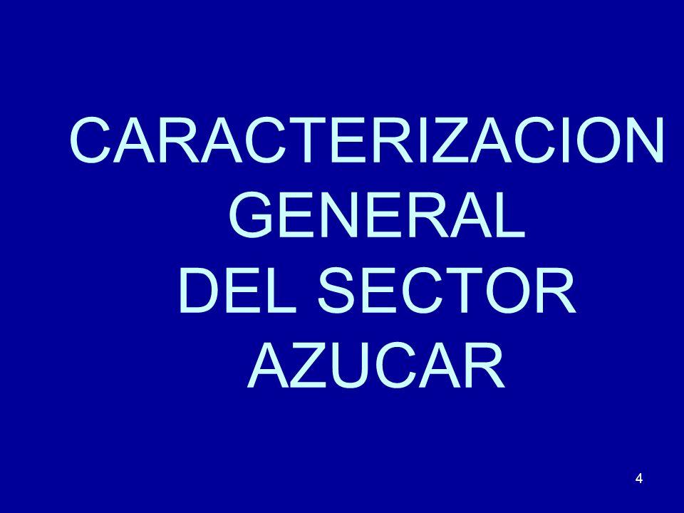 CARACTERIZACION GENERAL DEL SECTOR AZUCAR