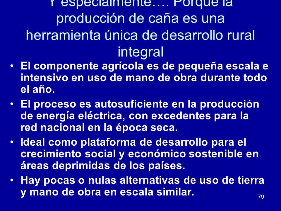 Y especialmente…: Porque la producción de caña es una herramienta única de desarrollo rural integral