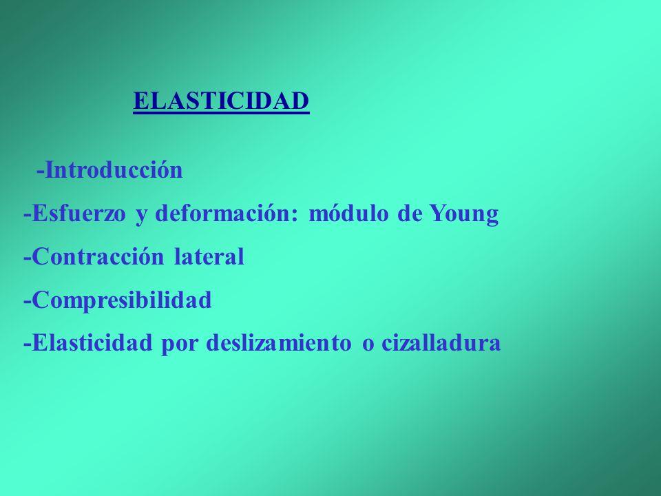 -Esfuerzo y deformación: módulo de Young -Contracción lateral