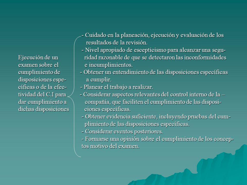 - Cuidado en la planeación, ejecución y evaluación de los resultados de la revisión.