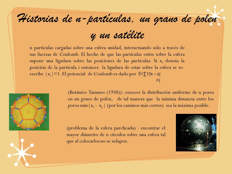 Historias de n-partículas, un grano de polen y un satélite
