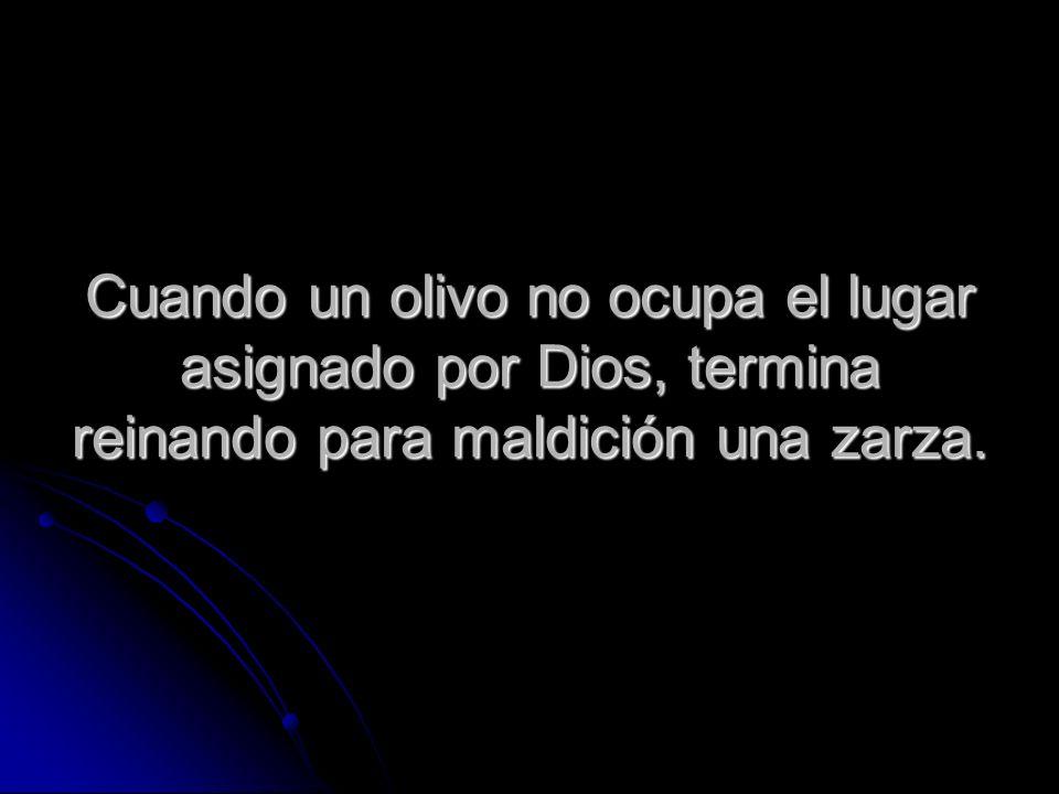 Cuando un olivo no ocupa el lugar asignado por Dios, termina reinando para maldición una zarza.