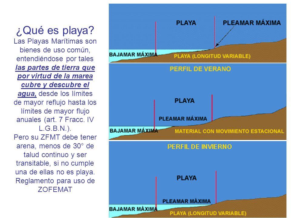 Reglamento para uso de ZOFEMAT