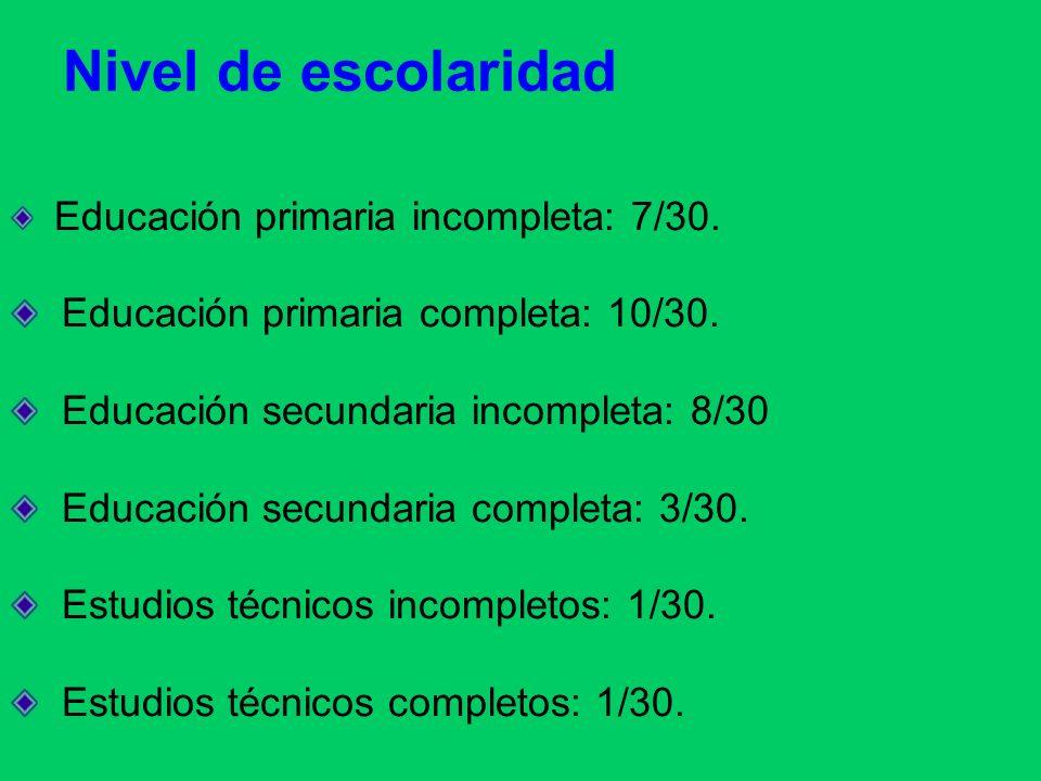 Nivel de escolaridad Educación primaria completa: 10/30.