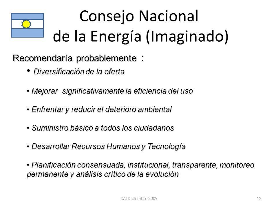 Consejo Nacional de la Energía (Imaginado)