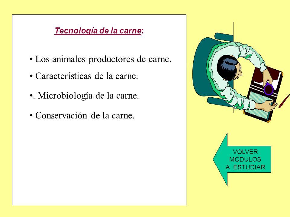 Tecnología de la carne: