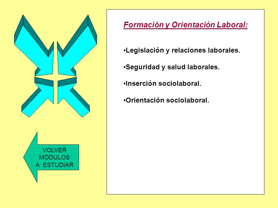Formación y Orientación Laboral: