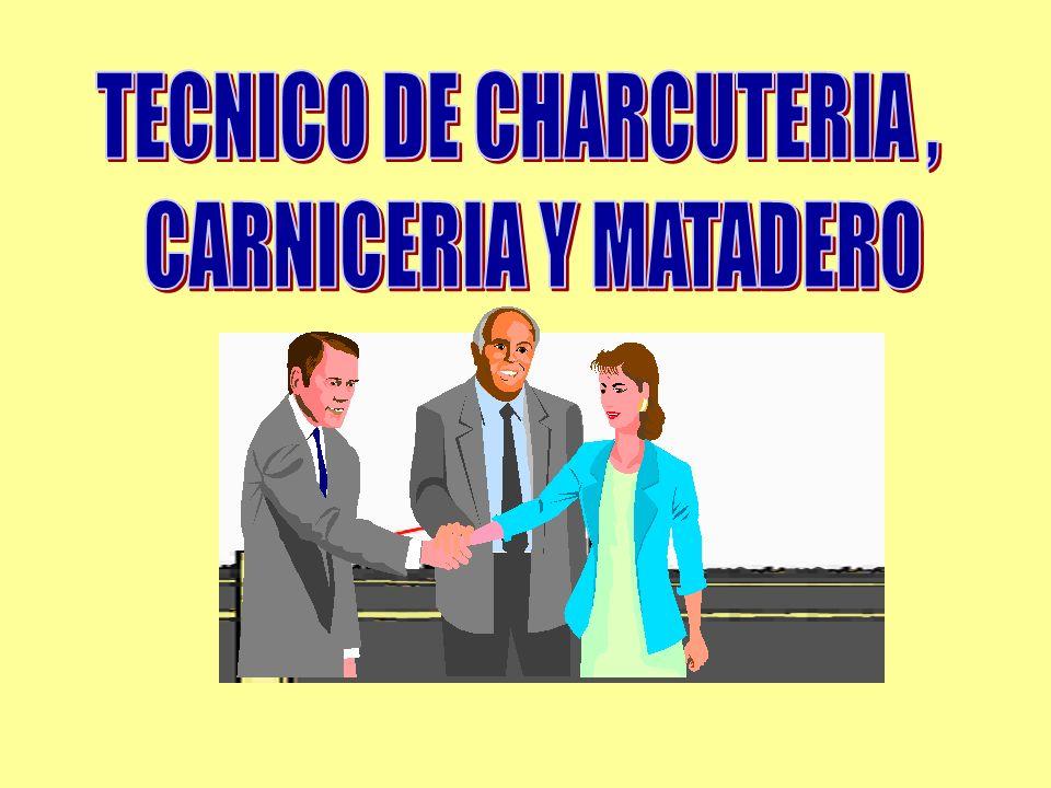 TECNICO DE CHARCUTERIA ,