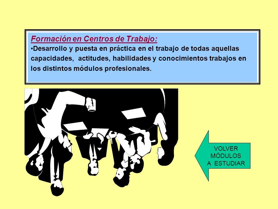 Formación en Centros de Trabajo: