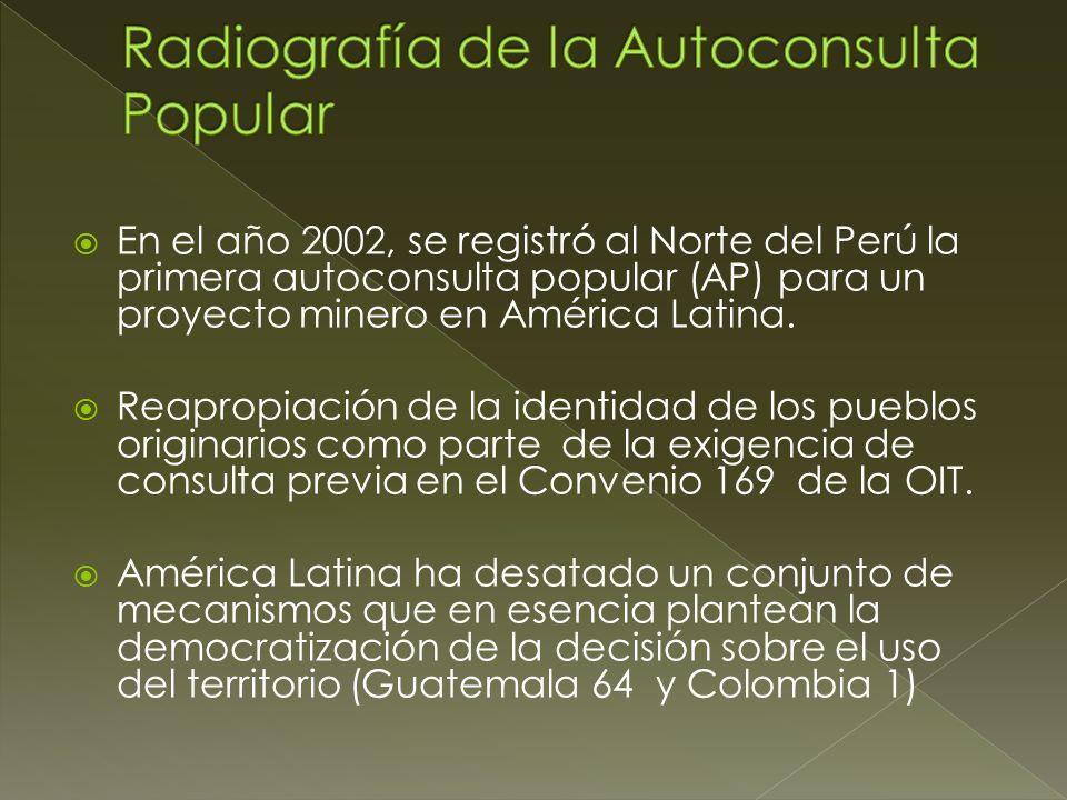 Radiografía de la Autoconsulta Popular