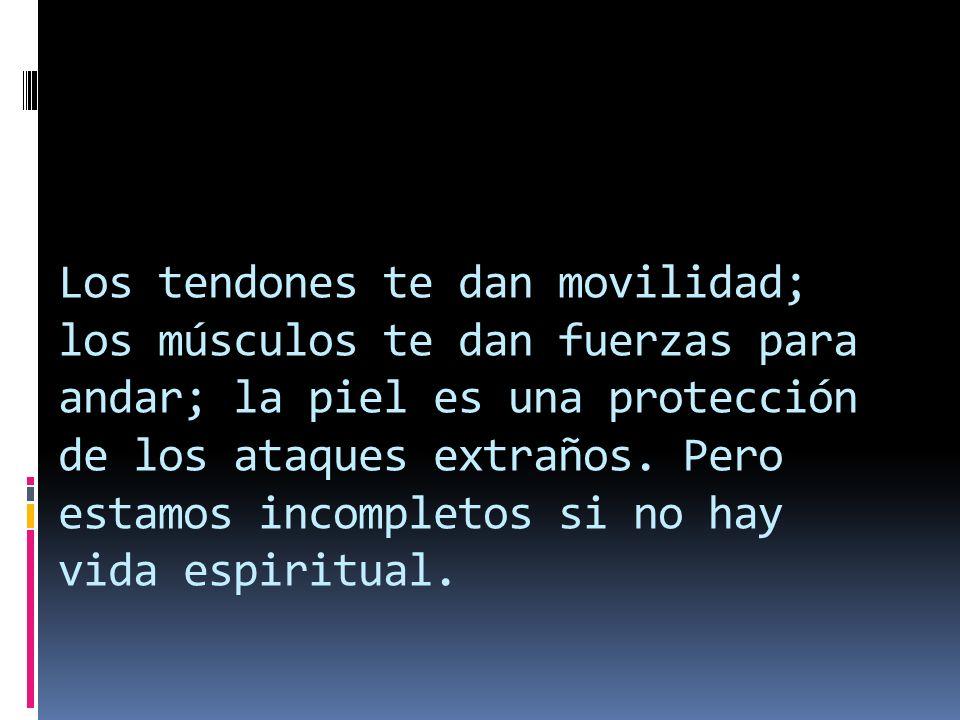 Los tendones te dan movilidad; los músculos te dan fuerzas para andar; la piel es una protección de los ataques extraños.