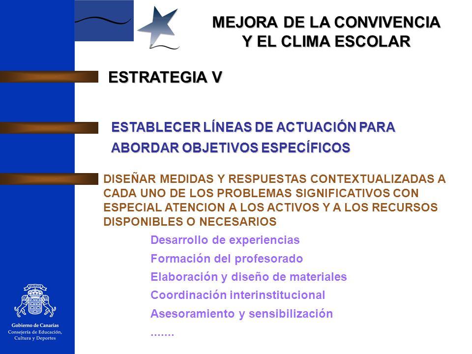 ESTRATEGIA V ESTABLECER LÍNEAS DE ACTUACIÓN PARA ABORDAR OBJETIVOS ESPECÍFICOS.