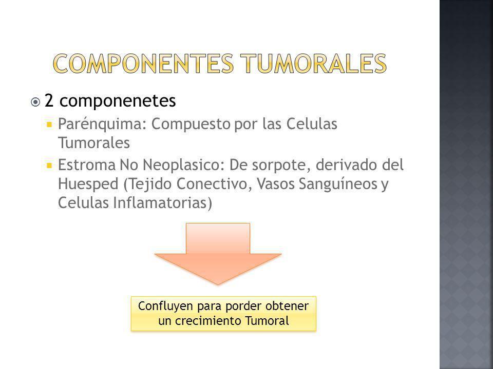 Componentes Tumorales