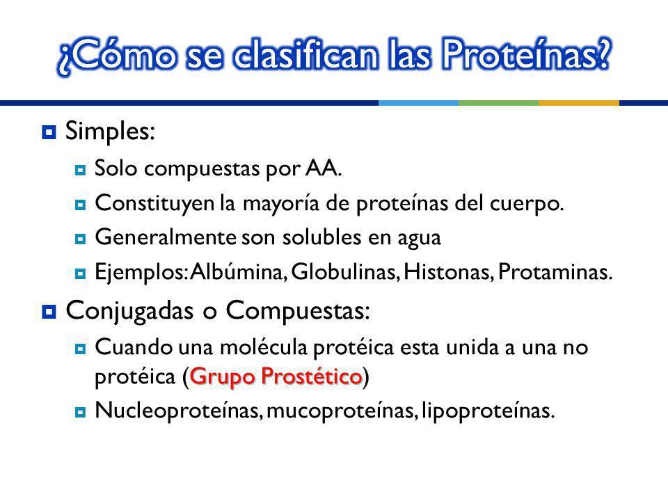 ¿Cómo se clasifican las Proteínas