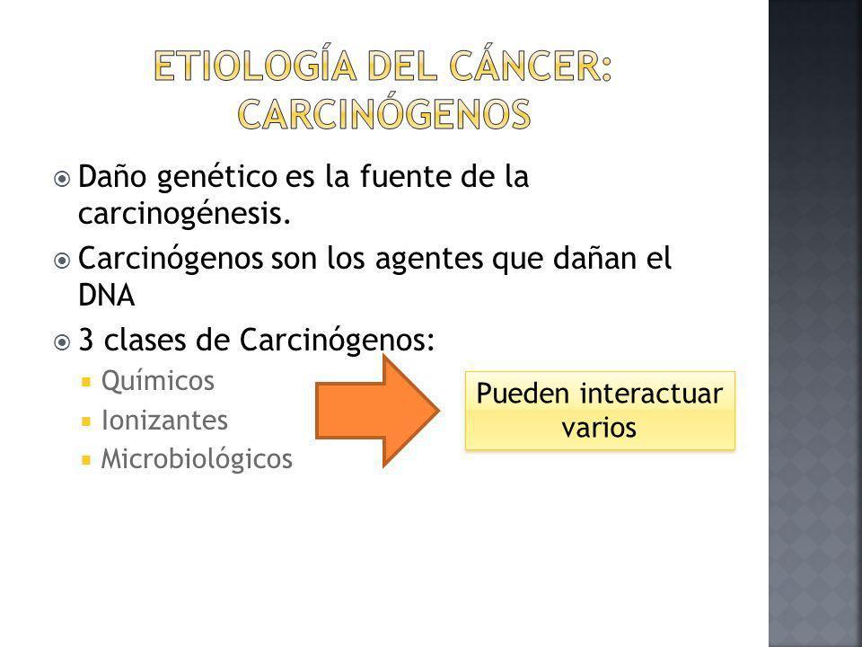 Etiología del cáncer: Carcinógenos