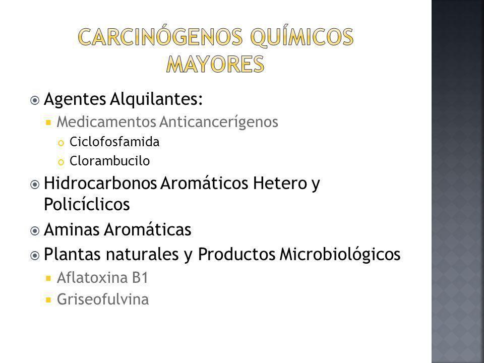 Carcinógenos Químicos Mayores