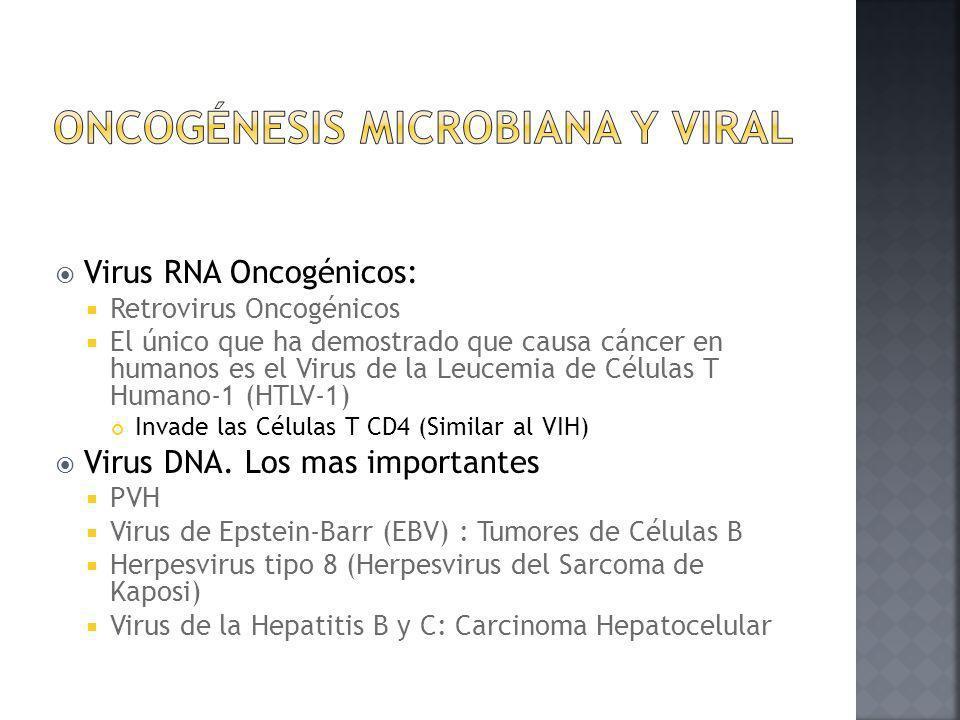 Oncogénesis Microbiana y viral