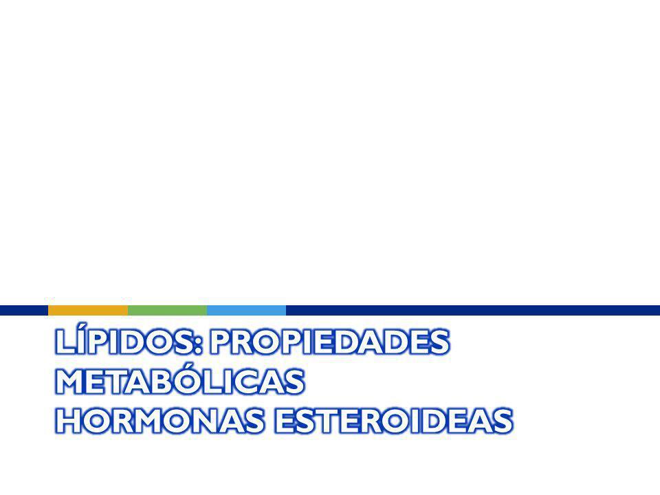 Lípidos: Propiedades Metabólicas Hormonas Esteroideas