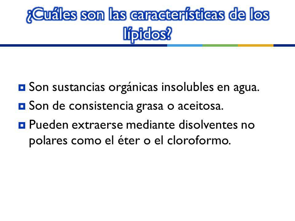 ¿Cuáles son las características de los lípidos