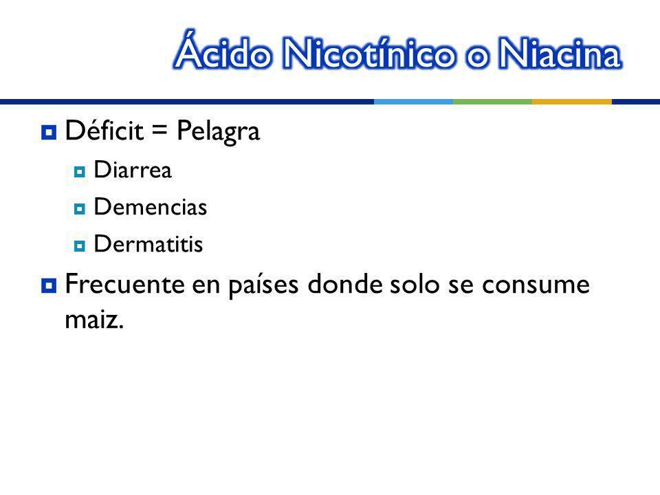 Ácido Nicotínico o Niacina