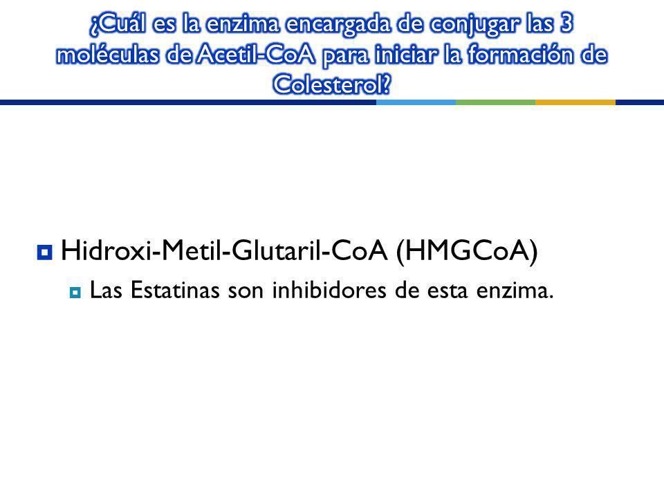 Hidroxi-Metil-Glutaril-CoA (HMGCoA)