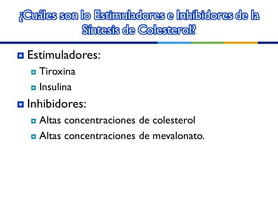 ¿Cuáles son lo Estimuladores e Inhibidores de la Síntesis de Colesterol
